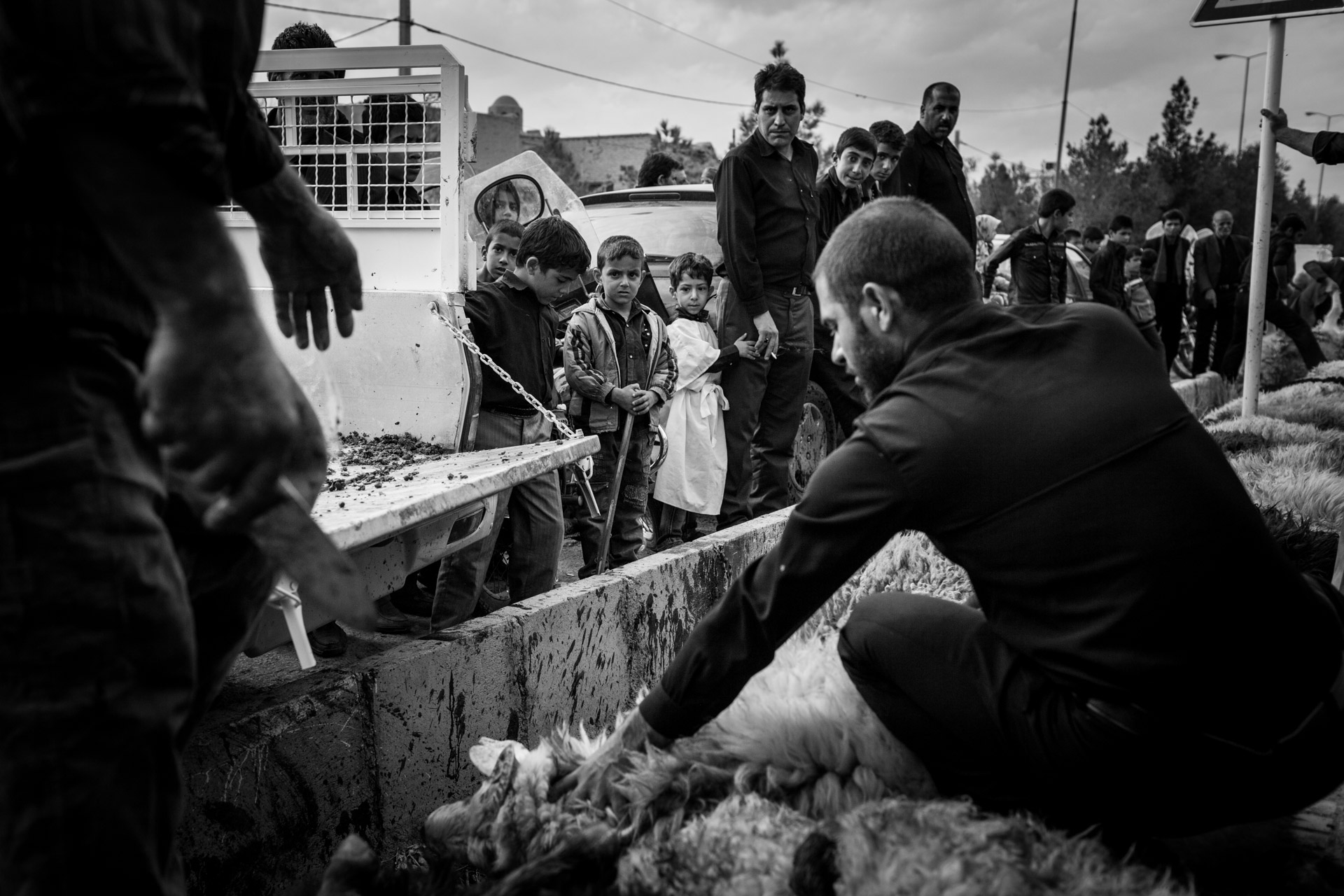 A small boy squeezes the hand of his father, while a man is busy slaughtering sheep on the sidewalk. The meat will be processed and distributed as free Kebab to the people right afterwards.
