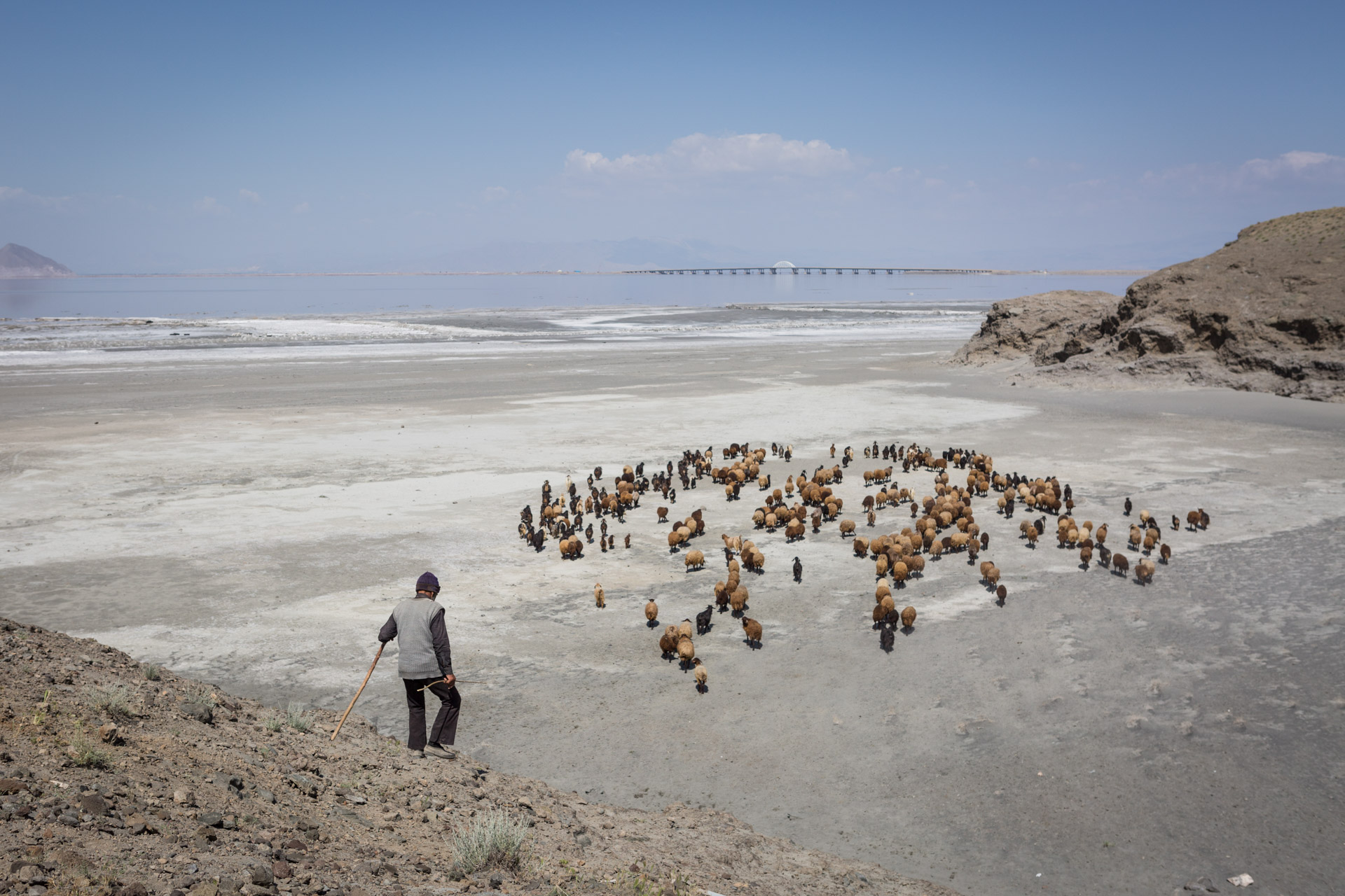 A shepherd wanders around Lake Urmia in search of meadows for his goats. The desertification of the lake makes it harder each year for farmers to find fertile soil.